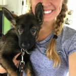 PSD Kennels puppy and training review